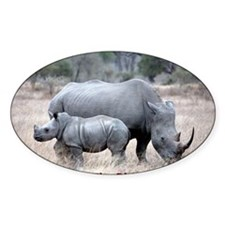 Save The Rhino Decal