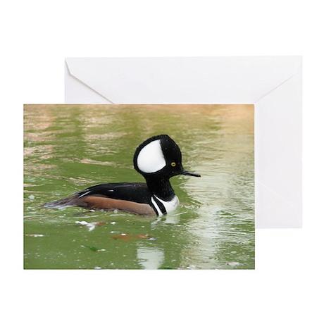 Pretty duck, nice target Greeting Card