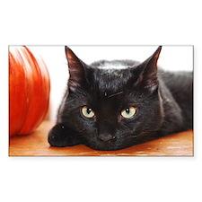Pretty Pretty Black Kitty Decal