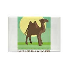 Hump Day Magnets