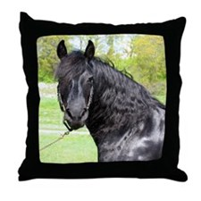 """Friesian 6"" Throw Pillow"