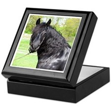 """Friesian 6"" Keepsake Box"