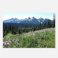 Mount Rainier Wildflowers Postcards (Package of 8)