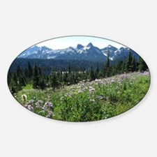 Mount Rainier Wildflowers Decal