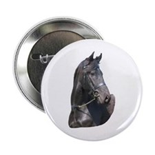 """Friesian 7"" Button"