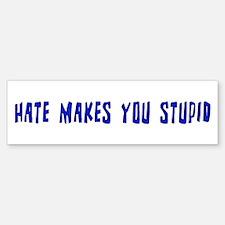 Hate Makes You Stupid Bumper Car Car Sticker