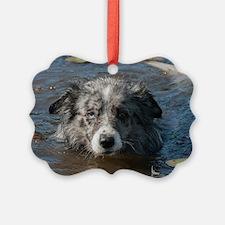Blue Merl Ornament