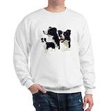 Border collie Crewneck Sweatshirts