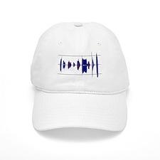 EVP are you listening? Baseball Baseball Cap