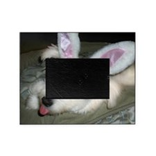 PollyBunnyEars Picture Frame