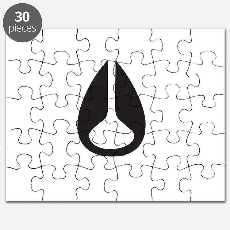 Nixon Puzzle