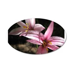 Pink Lily Wall Decal