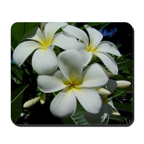 Yellow Center Plumeria Mousepad