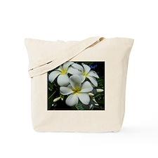 Yellow Center Plumeria Tote Bag
