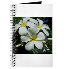Yellow Center Plumeria Journal