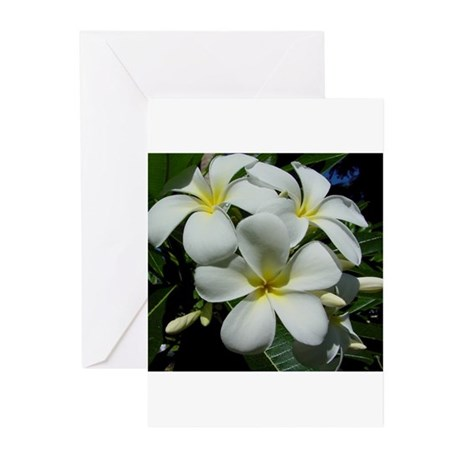 Yellow Center Plumeria Greeting Cards (Package of