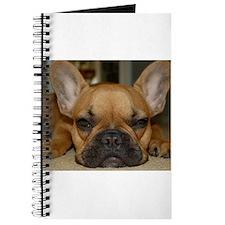 French Bulldog Calendar Journal