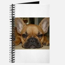 French Bulldog Calendar Journal