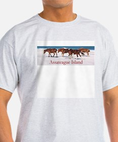 Assateague Ponies Ash Grey T-Shirt
