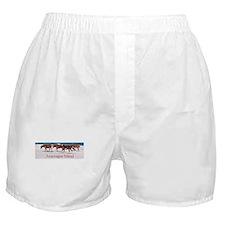 Assateague Ponies Boxer Shorts