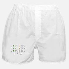 Mare Egrets Moose! Boxer Shorts