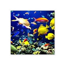 "Colorful Aquatic Ocean Life Square Sticker 3"" x 3"""