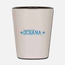 NAS Oceana VB VA Shot Glass
