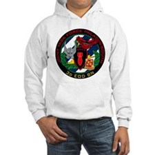 3d EOD JTF Paladin-South Hoodie