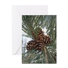 Pinecones In Snow Greeting Cards