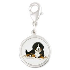 Bernese Mountain Dog Bright Eyes Charms