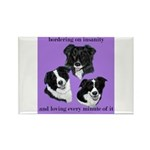 Bordering on Insanity (Border Collies) Rectangle M