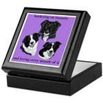 Bordering on Insanity (Border Collies) Tile Box