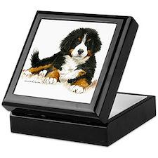 Bernese Mountain Dog Bright Eyes Keepsake Box
