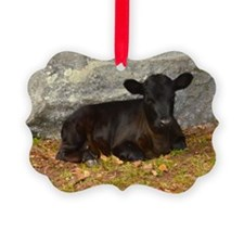 Vermont Calf lying Down Ornament