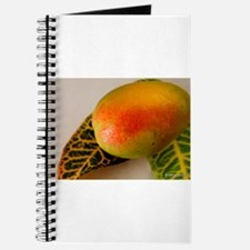 Lucious Mango Journal