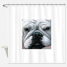Dog 118 Shower Curtain