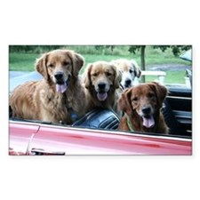 Summer Drive Golden Retriever Sticker (Rectangular