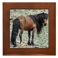 Mongolian Horse Framed Tile