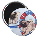 Agility Chinese Pugs Magnet