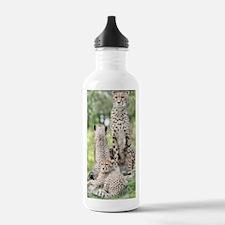 Cheetah002 Sports Water Bottle