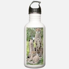 Cheetah002 Water Bottle