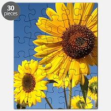 Double Sunflower Puzzle
