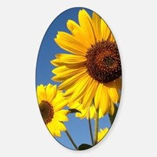 Double Sunflower Decal
