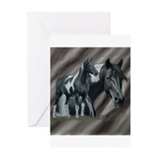 Pinto Horse Greeting Cards