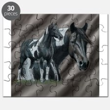 Pinto Horse Puzzle