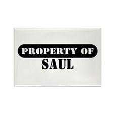 Property of Saul Rectangle Magnet