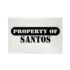 Property of Santos Rectangle Magnet