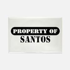 Property of Santos Rectangle Magnet