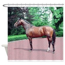 FUSAICHI PEGASUS Shower Curtain