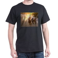3 blazes T-Shirt
